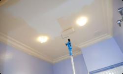 потолочная водоэмульсионка - особенности выбора и использования